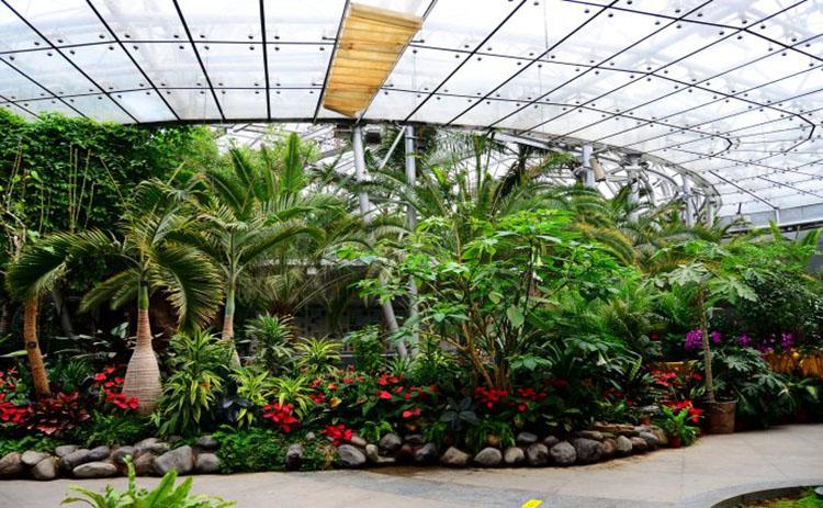 热带植物园电热膜采暖案例