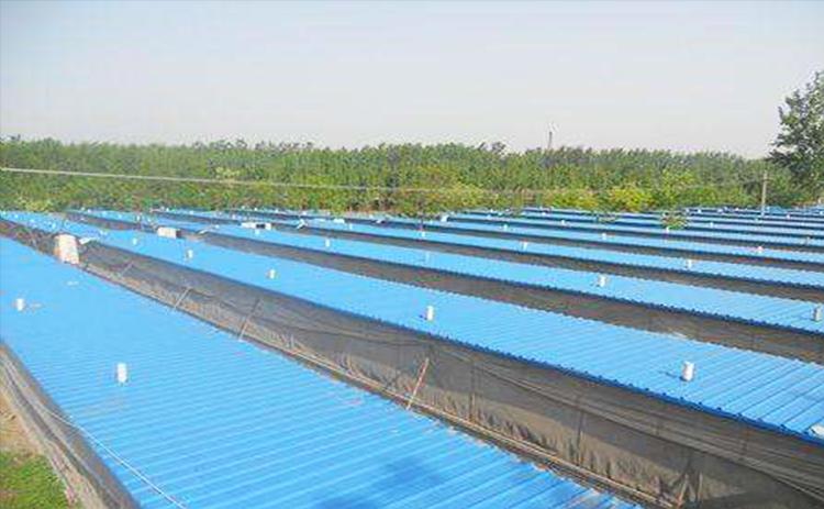 养殖场采暖案例-成都宜宾广汉等电缆线育雏房地暖安装图片